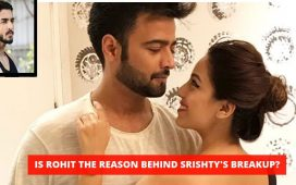 Srishty Rode And Manish Naggdev
